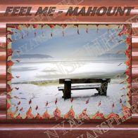 Feel Me-Cover- vannmerking-15.3.16
